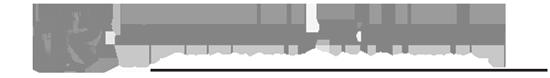 logo-550x78gris